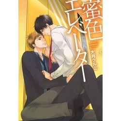 蜜色エレベーター3F
