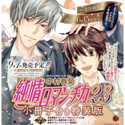 純情ロマンチカ(23) 小冊子付き限定版